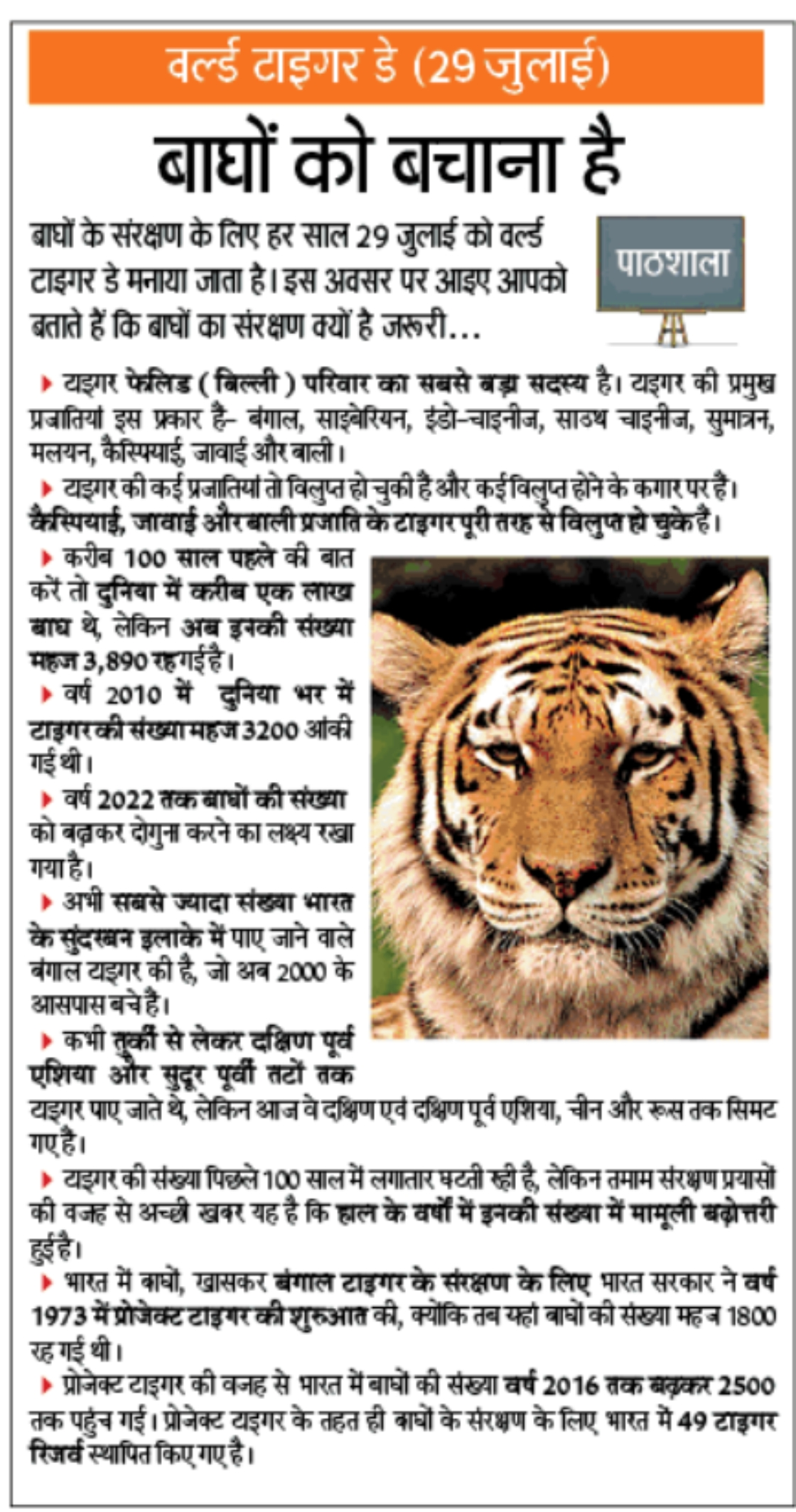 save the tigers in hindi I think that this answer violates the community guidelines chat or rant, adult content, spam, insulting other members,show more i think that this answer.